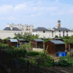 Jardins partagés à Versailles